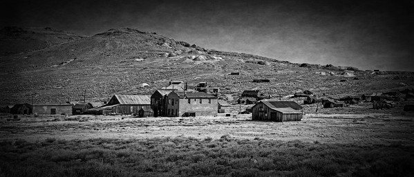 Bodie Black and White