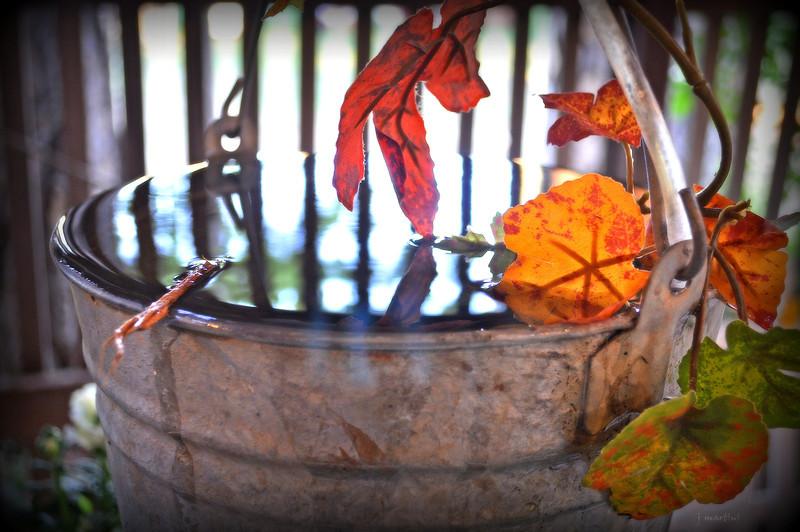 bucket 9-21-2012.jpg