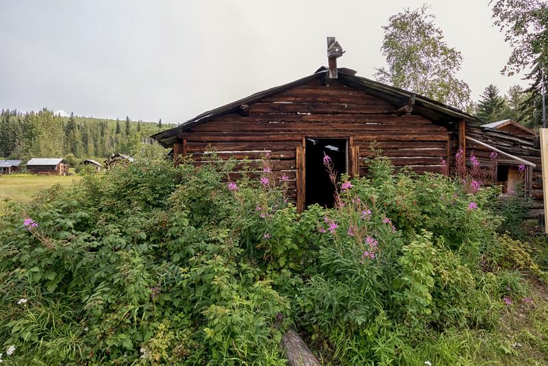 Moosehide Cabin