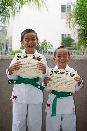 Aikido - Green Belt