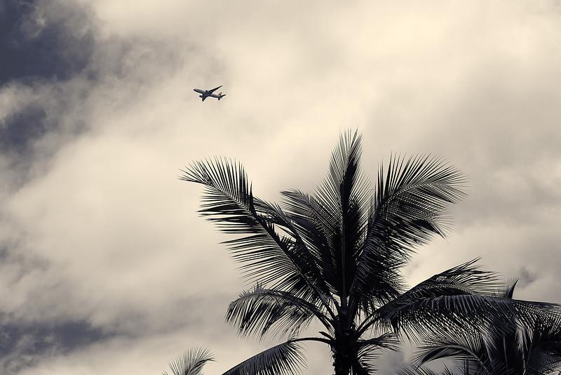 Hawaii-IMG_3186_.jpg