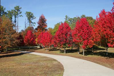 Walden Autumn 2007