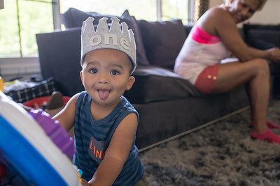 Wild One: Lincoln's First Birthday