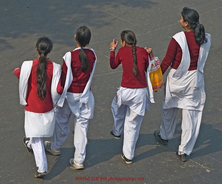 INDIA2010-0130-349A.jpg