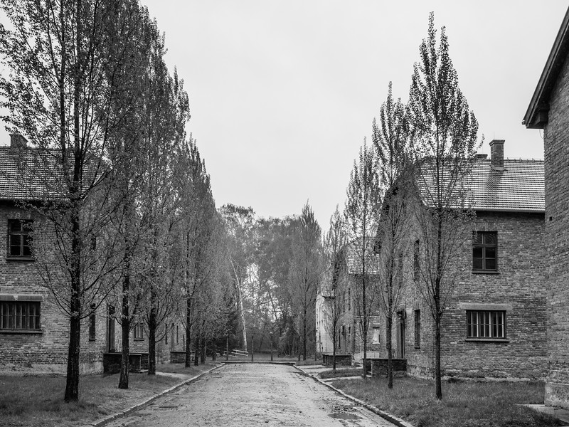 Auschwitz-Birkenau-2.jpg