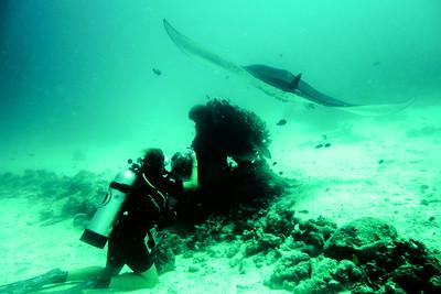 Arborek - Under Water