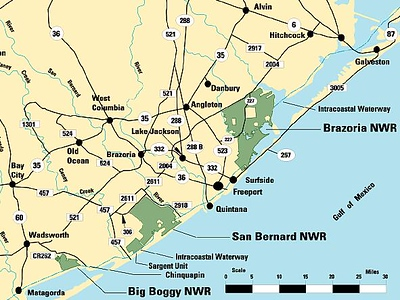 Journal Site 86:  Brazoria National Wildlife Refuge, Freeport, TX - December 1, 2007 - February 15, 2008