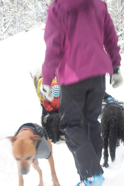 Wallowa Alpine Huts_03-12117
