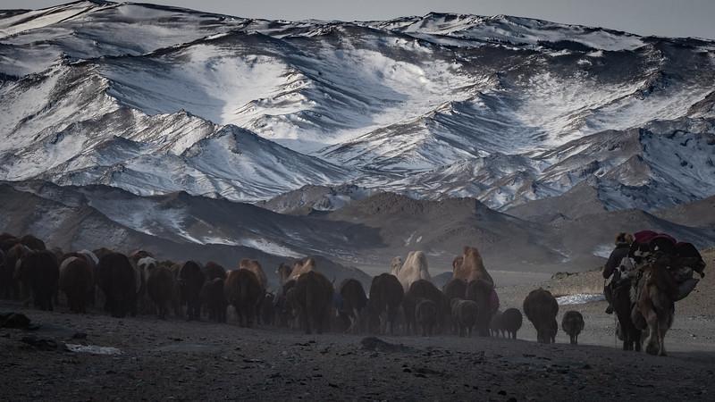 Mongolia - 2020 -10.jpg