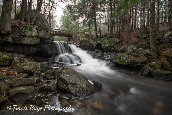 Bicknell Brook in the Cold Rain