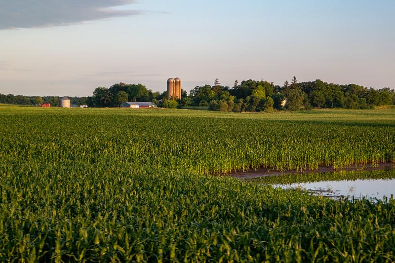 Corn Farm/Silos Near Rosendale, WI