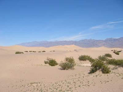 2005_03 Death Valley
