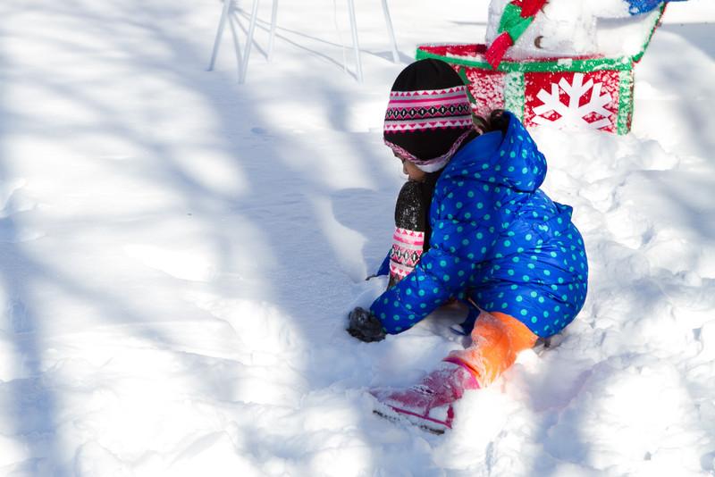 Snow2014-11.jpg