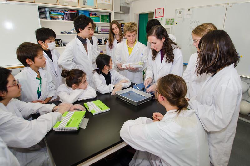 Grade 7 Science-5.jpg