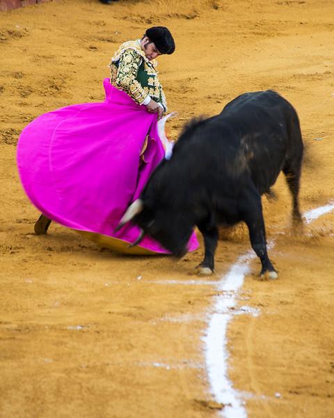 Bullfight12.jpg