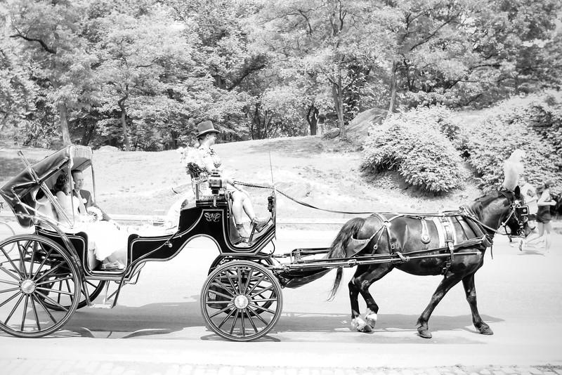 Caleb & Stephanie - Central Park Wedding-9.jpg