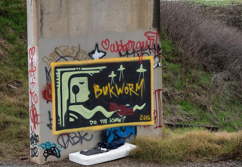 bukworm.jpg