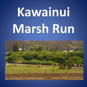 Marsh Run 2017