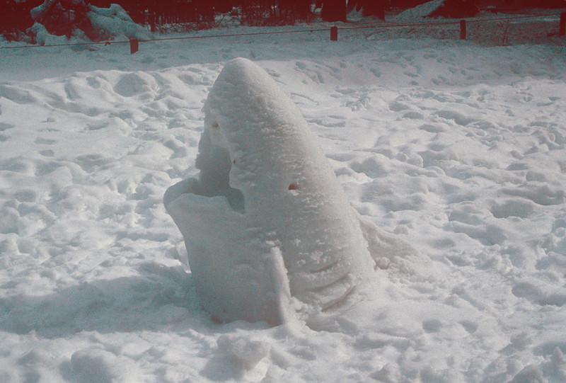 1990-02 Yosemite Snow Shark.jpg