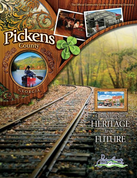 Pickens NCG 2011 Cover (1).jpg
