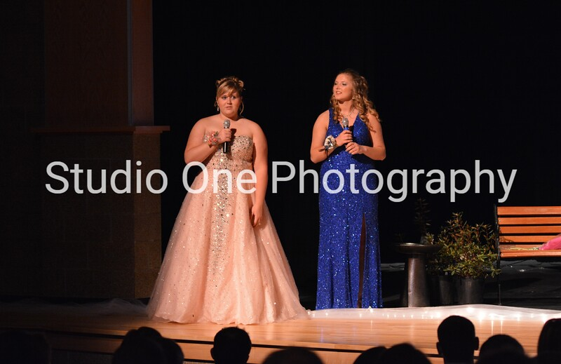 NHS Prom 2014 Grand March