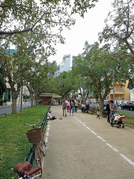 The median on Rothschild Blvd