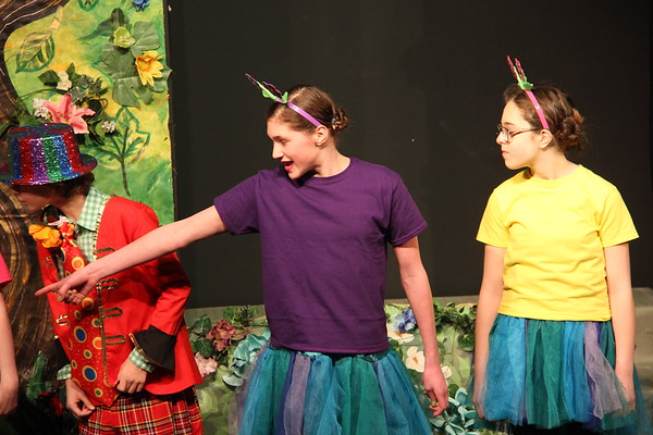 Wizard of Oz: Performance