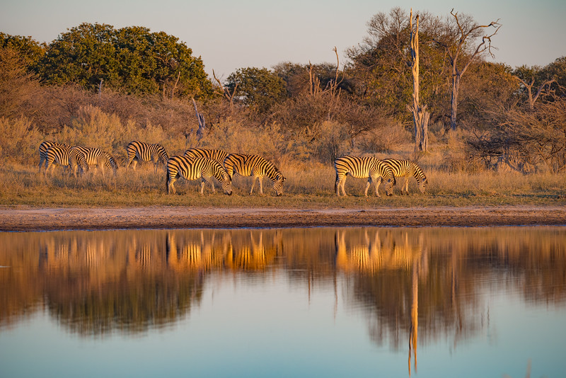 Botswana_June_2017 (1029 of 6179).jpg