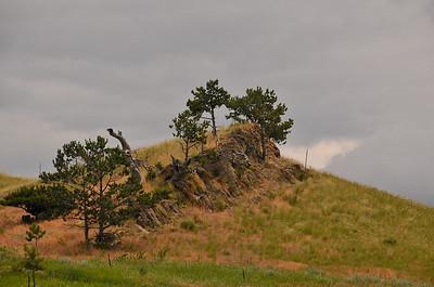 Montana-Wyoming Trip