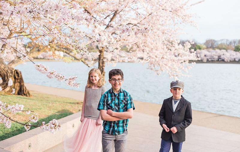 CherryBlossom-53.jpg