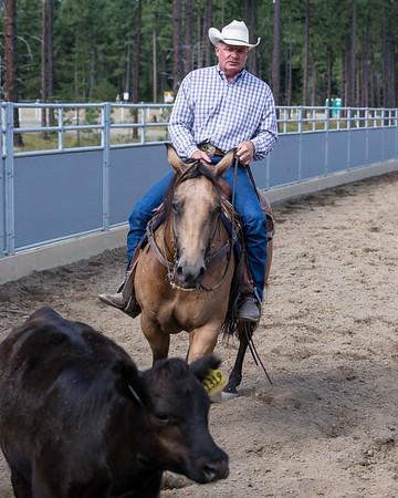 Kim Witty Cow Clinic 8 2013