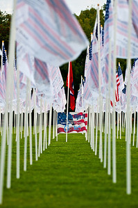9/11 field of flags