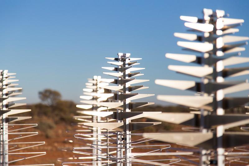 SKALA antennas of the Aperture Array Verification System (AAVS) 1.5