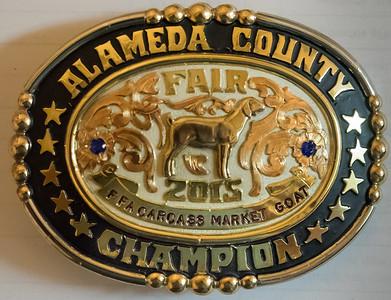 150704 FFA AWARD BUCKLES (ALAMEDA COUNTY FAIR)