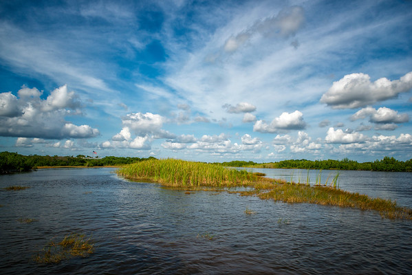 Everglades and the Wild