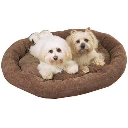 Pampered Pet Beds