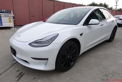 Tesla Model 3 - Pearl White Multi-Coat 2