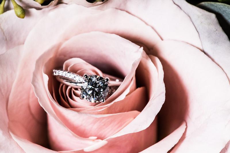 Janesk_Chandler_Oaks_Barn_Wedding-28.jpg