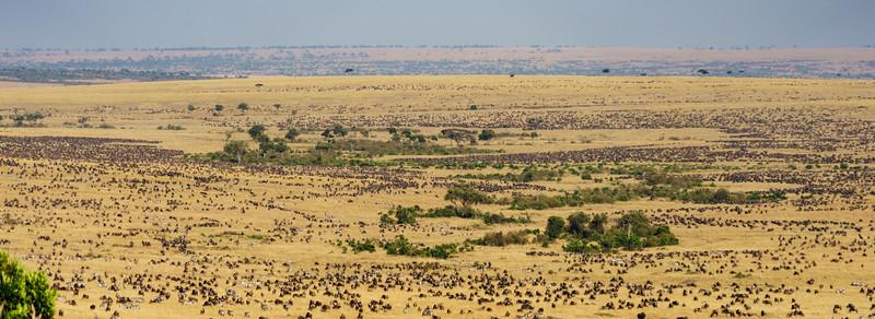 Kenya 2015-06506.jpg