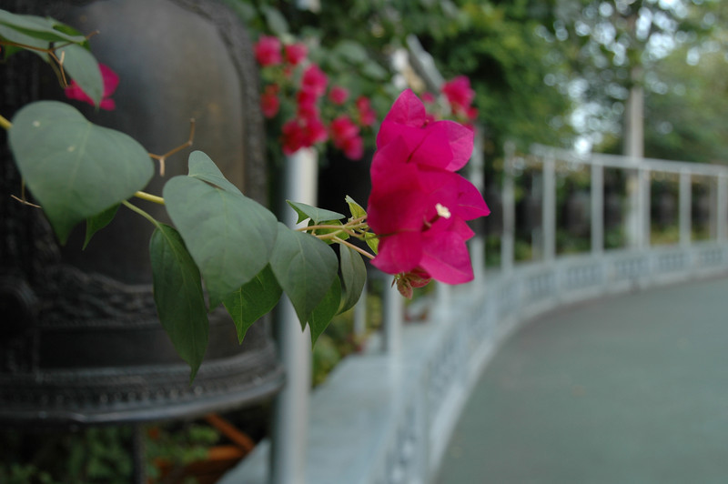 Golden Mount Temple Bells - Bangkok, Thailand