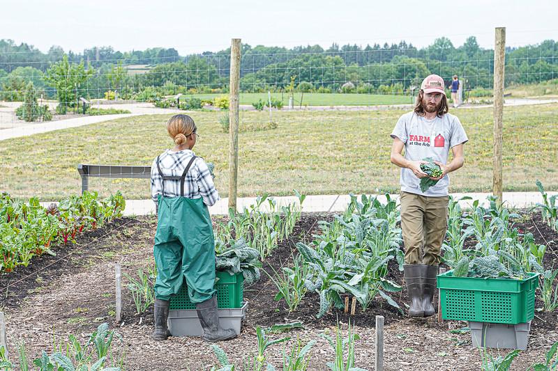 Arboretum, July Harvest-56.JPG