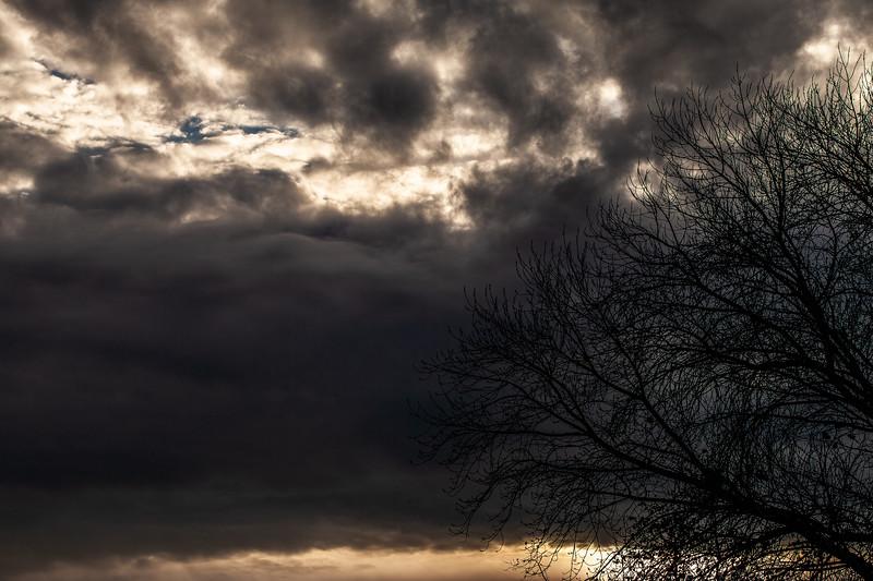 Dark Sky 2, Campbell, California, 2010
