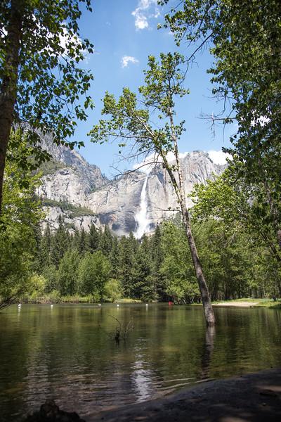Yosemite_2016_Park-47.jpg