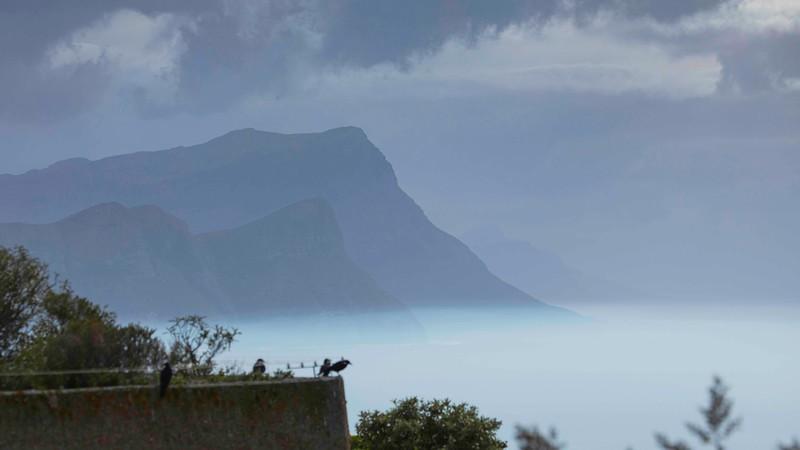 170507-120342-Cape Town-1799.jpg