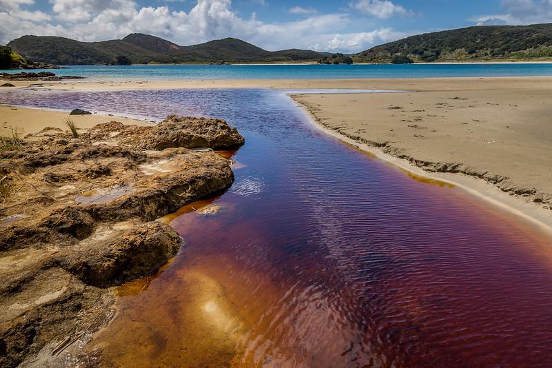Farbenreicher Zufluss in die Waikato Bay