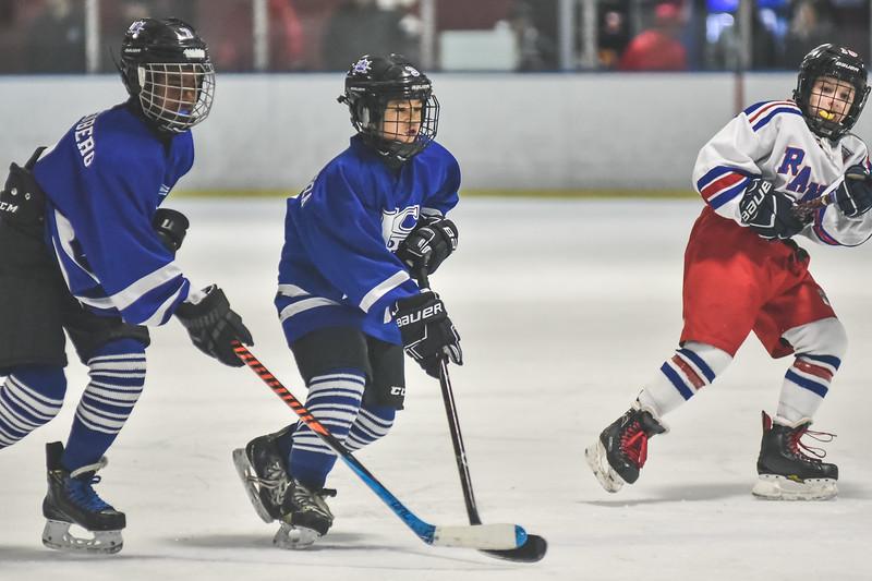 Leafs-95.jpg