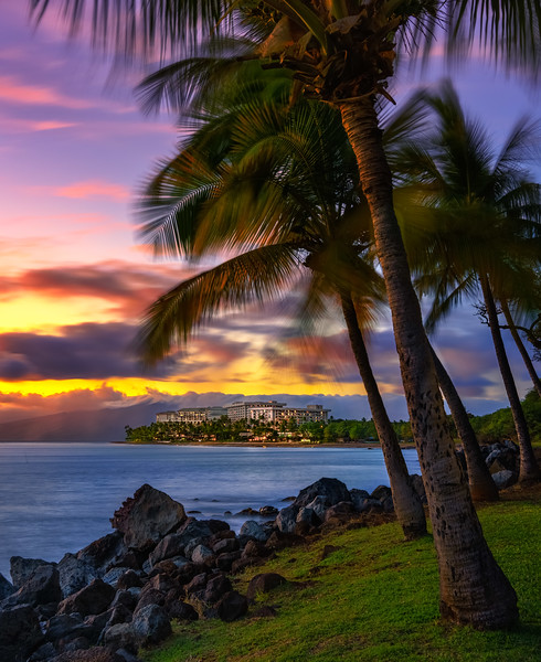 Hawaii resort with palm trees and mountains