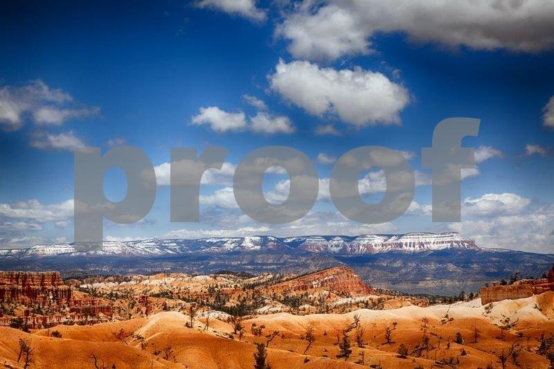 Navajo Trail 8044_HDR (2).jpg