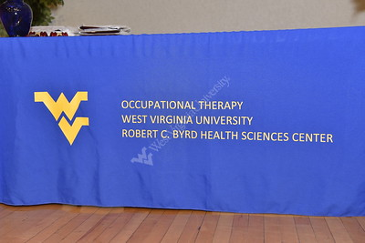 32067 Occupational Therapy Graduation Reception May 2016