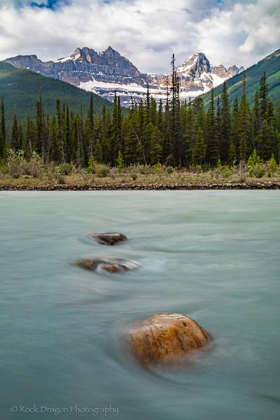 Jasper-31.jpg